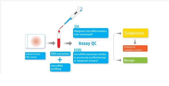 בדיקות ציטוגנטית להערכת קשריות בבלוטת התריס - ד